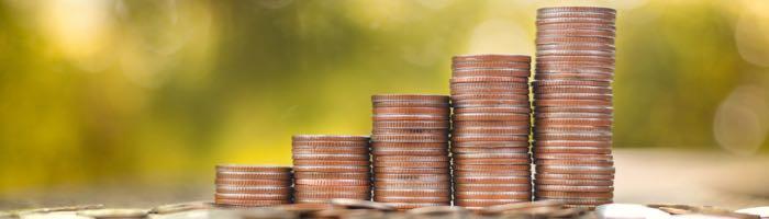 Hohe Zinsen auf BERGFÜRST