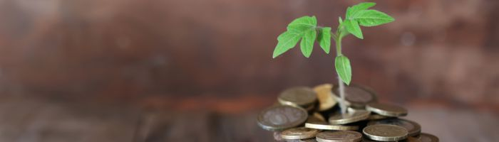 Geld anlegen hohe Zinsen