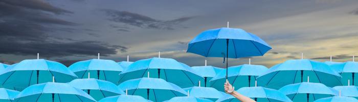 Anlegerschutz: Warum BERGFÜRST mit besicherten Bankdarlehen den besseren Schutz bietet